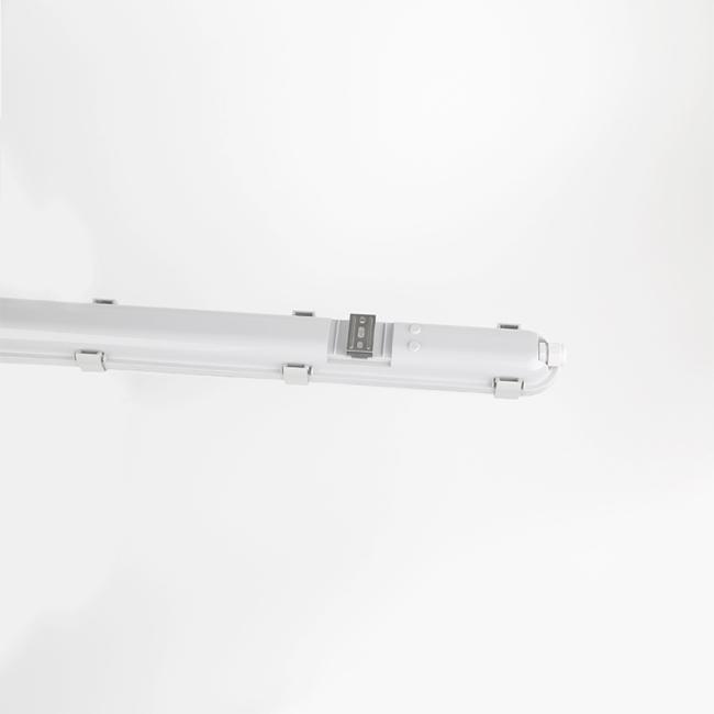 FX Series Bulkhead Lamp