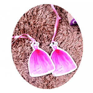 Gift  Bag Car Freshener Customized Your Logo Promoting Your Products