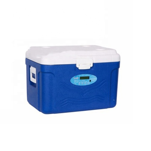 Chargeable 220V 50HZ Mini Portable Cooler Box Car Refrigerator