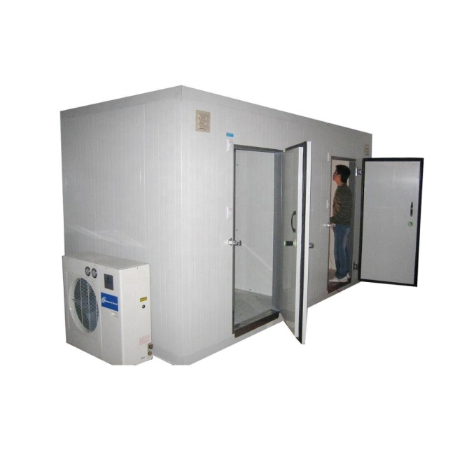 FR-CR03B 30CBM Truck Industrial Vegetable Fruit Freezer Cold Room with Condenser