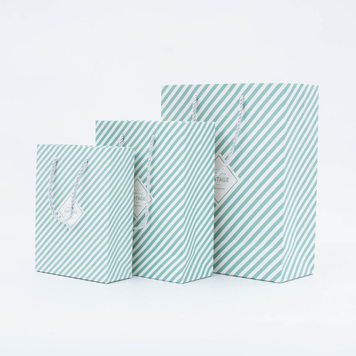 New Design Luxury Stand Up Take Away Shopping Paper Bag For Gift Packing  Bolsas De Papel