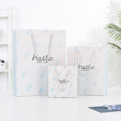 Multiple size hard paper gift bag packaging custom with rope