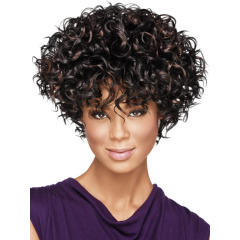 Generic Afro Wig African wig lady short curly hair