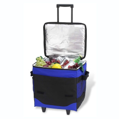 Collapsible insulated rolling cooler (60 can )
