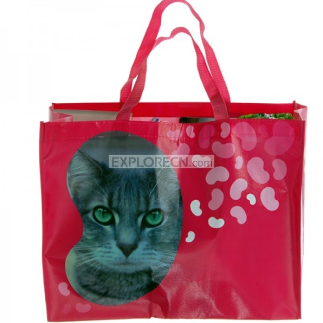 Large Non-woven Bag With Coating
