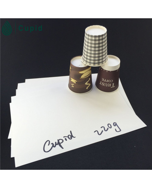 220 gsm Foodgrade Pe Coated Paper In Sheet For Making Paper Cups