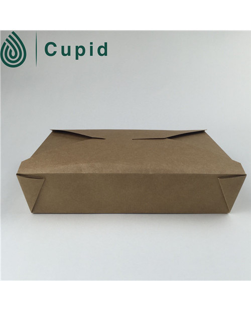 Chinese wholesale custom kraft paper noodle box