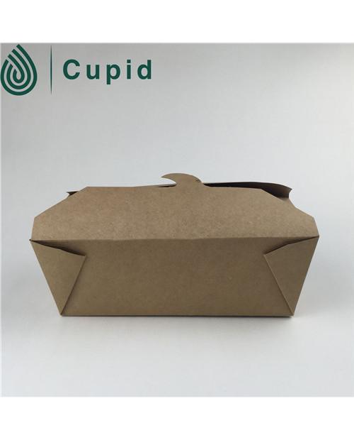 No Printing Kraft Paper Noodle Box